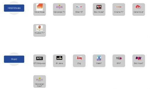 Hindi Movies and Music Channels in Zing Digital