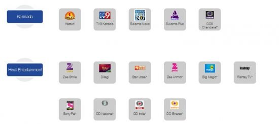 Kannada and Hindi Channels In ZIng Digital 99