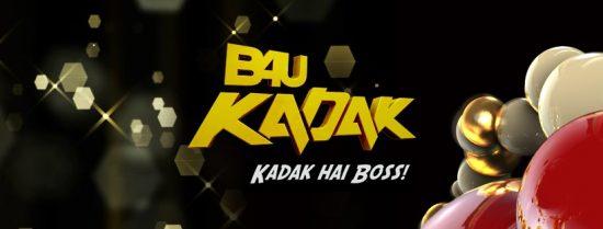 channel logo of b4u kadak